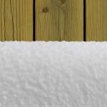 PLATINUM Валяк за много гладка повърхност 25 см - ANTEX